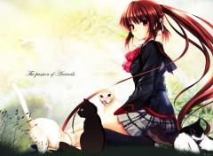 Fonds d'écran Manga the passion of animals