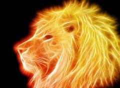 Fonds d'écran Art - Numérique Lion