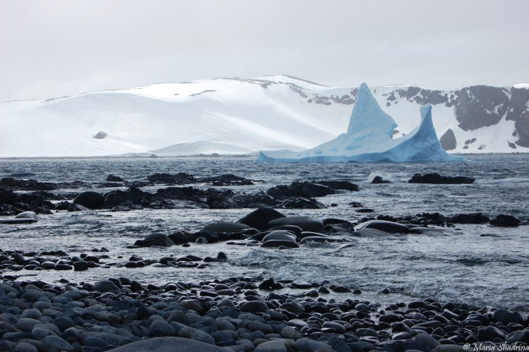 Wallpapers Trips : South America Arctica Wallpaper N°290937