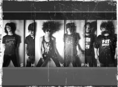Wallpapers Music shakaponk 2012