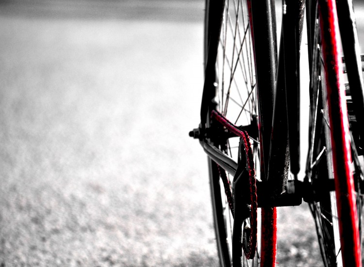 Wallpapers Sports - Leisures Cycling FIXED
