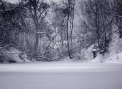 Wallpapers Nature La rivière gelée.