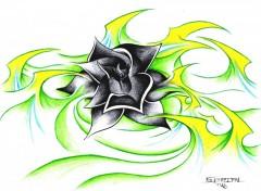 Fonds d'écran Art - Crayon Black Rose