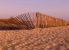 Voyages : Europe Carnac Beach