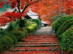 Voyages : Asie Japon