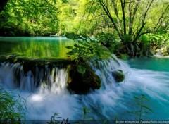 Nature Cascade