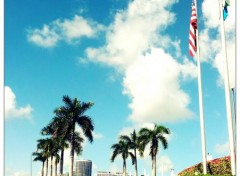 Trips : North America Voyage Miami