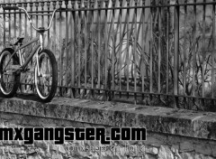 Sports - Loisirs Bmxgangster - federal bike custom