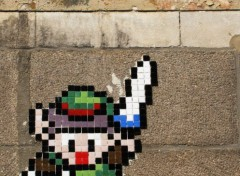 Video Games LINK (zelda - place du bouffay à Nantes)