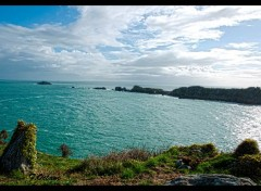 Nature Pointe du Groin St Malo