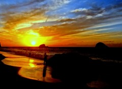Nature blue sunset