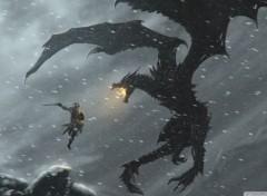 Video Games The Elder Scrolls V: Skyrim