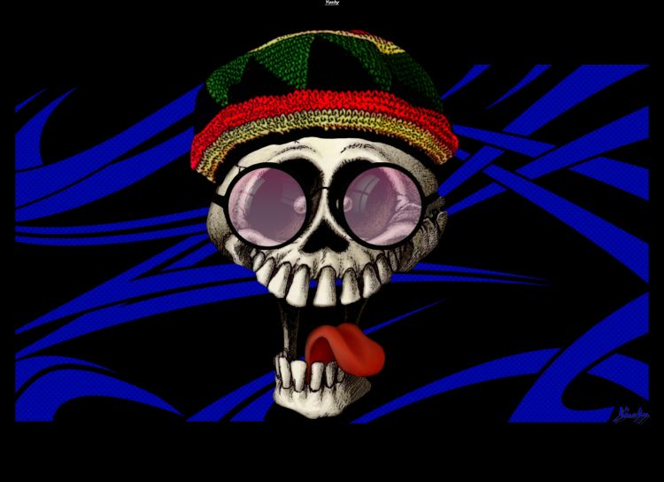 Fonds d'écran Humour Dessins Cool le Skull