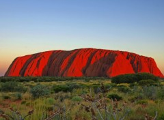 Trips : Oceania Ayers Rock