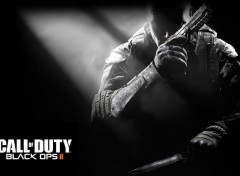 Video Games Call of Duty Black Ops 2