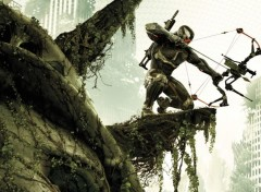Video Games Crysis 3