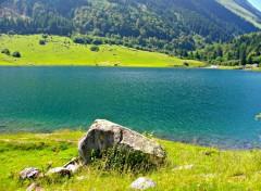 Nature lac des pyrénnées (barrage du tech)