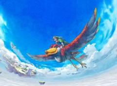 Jeux Vidéo Link in the sky