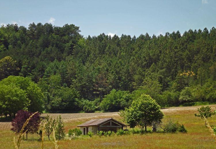 Fonds d'écran Nature Campagne la petite maison dans la prairie