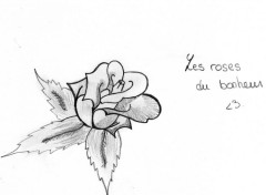 Art - Pencil Art Lucie
