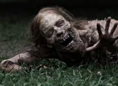 TV Soaps Walking Dead