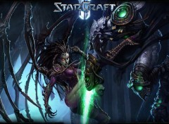 Video Games Kerrigan vs Zeratul
