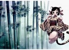 Manga Forêt de bambous