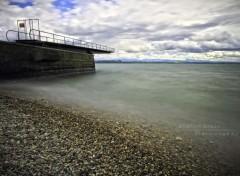 Nature Lac de Neuchâtel
