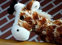 Objects C'est bibiche ma girafe x)