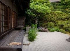 Voyages : Asie Jardin japonais