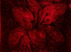 Art - Peinture Fuchsia~Lilium