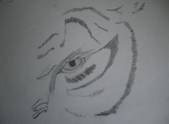 Art - Crayon l'oeil du tigre