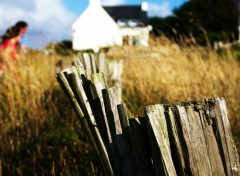 Nature clôture