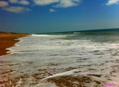 Nature une vague de frais !