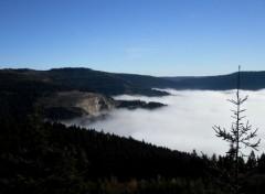 Voyages : Europe Black Forest