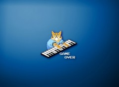 Humour Keyboard Cat Game Over