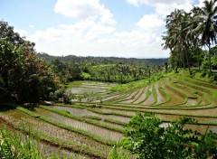 Voyages : Asie pics of bali