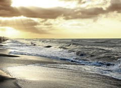 Nature calafell playa
