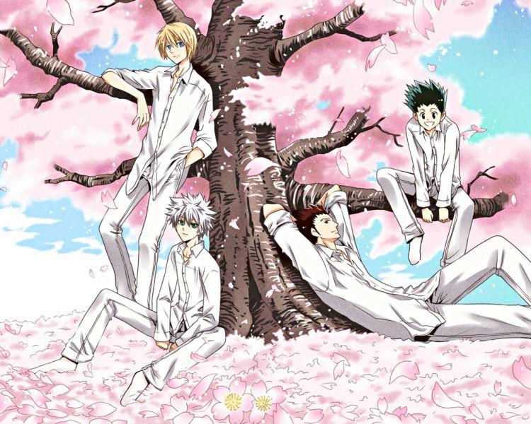 Fonds d'écran Manga Hunter x Hunter Wallpaper N°312293