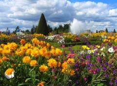 Nature jardins