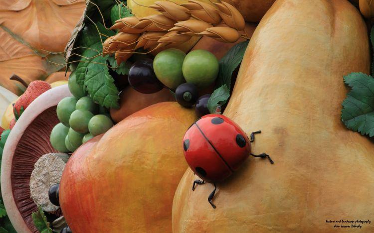 Fonds d'écran Nature Fruits Cinq fruits et légumes par jour!