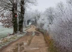 Nature givre, neige et pluie