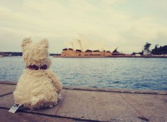 Trips : Oceania Doggy in Australia (1/?)