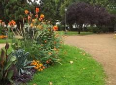 Nature petit parc fleuri