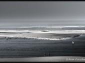 Nature le bassin d 'arcachon
