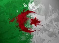 Art - Numérique Drapeau Algerie