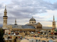 Trips : Asia paysages-damascus