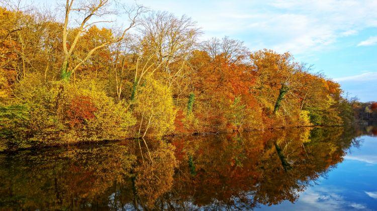 Fonds d'écran Nature Lacs - Etangs Reflets