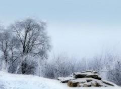 Nature Beauté de congélation 1-2012
