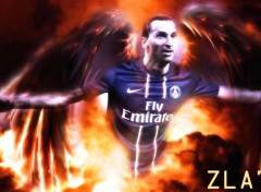 Sports - Leisures Zlatan..ce dieu (du football).
